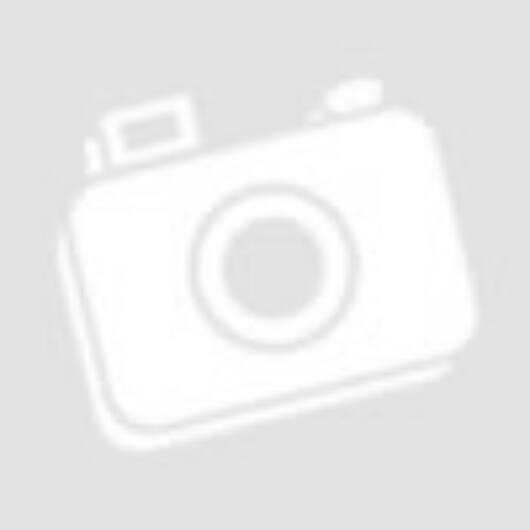 Német lánctalpas motorkerékpár / Kettenkrad